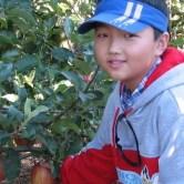 boy-apple-upick-400x600