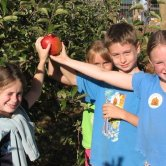 kids-holding-apple-640x486