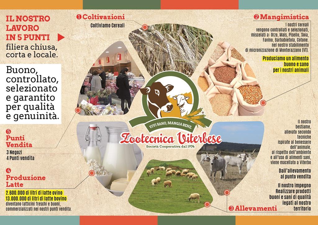 Cucina Romanesca - Zootecnica Viterbese