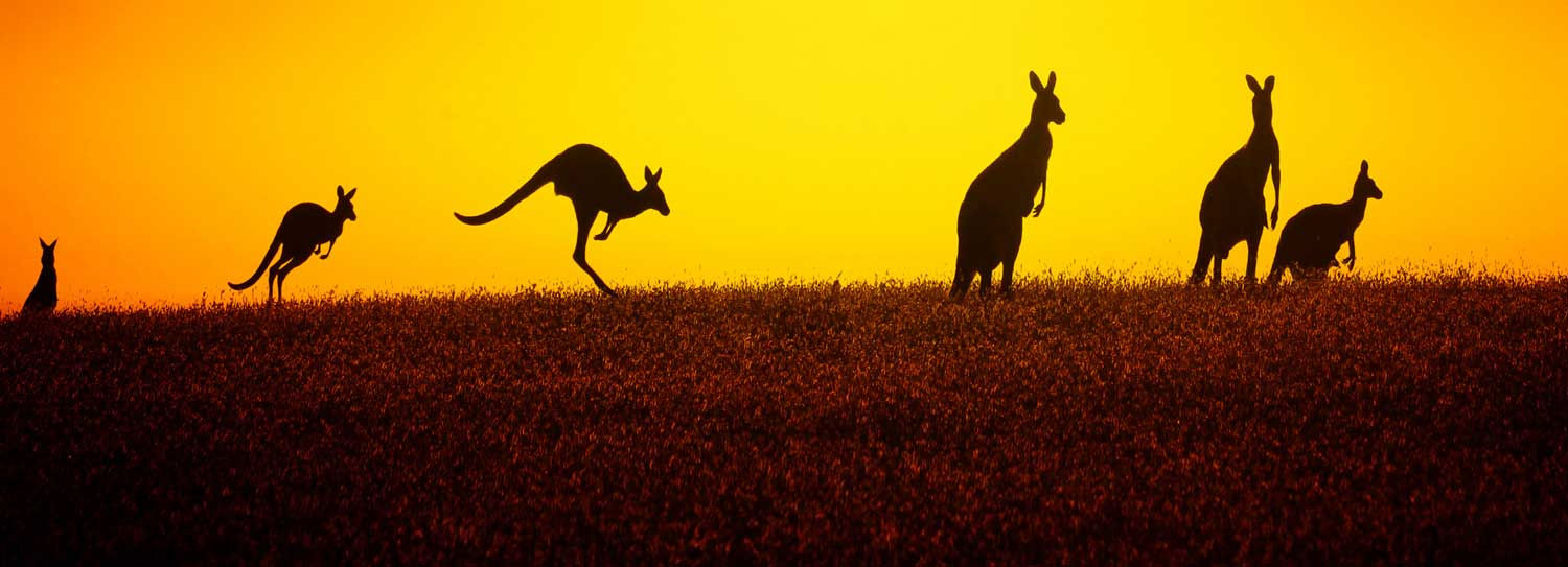 supperannuation australie