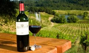wine tours cape town
