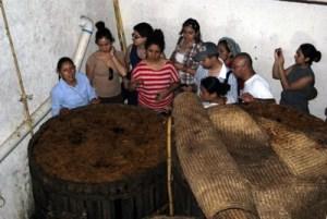 Tinas de Fermentación, Santa Catarina de Minas, Oaxaca
