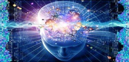 brain spirit connection