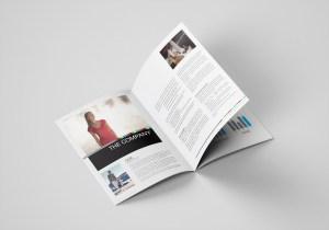 Ballantynes Annual Report