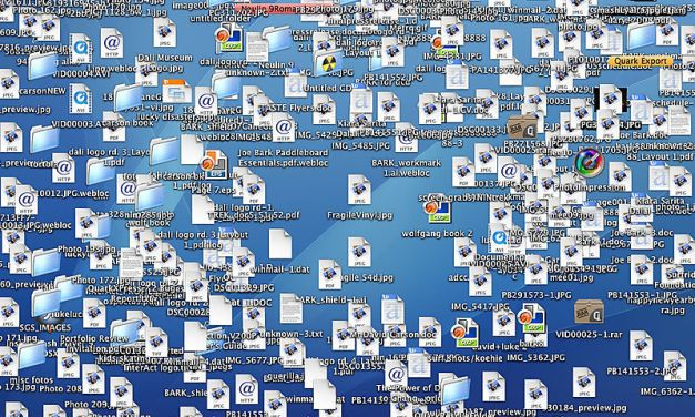 Don't be a computer clutter bug