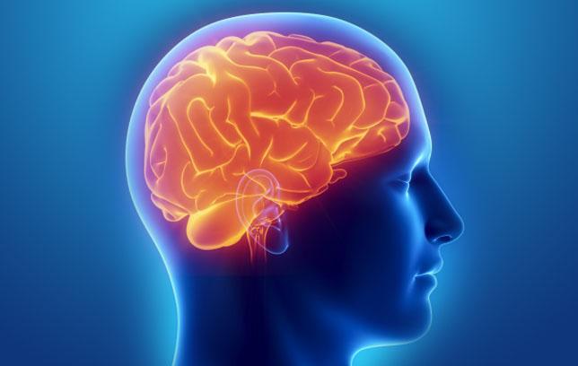 Managing your brain, part 2