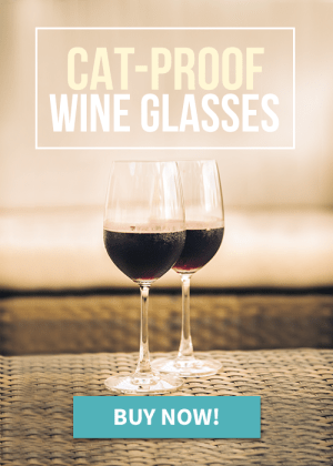 cat proof wine glasses