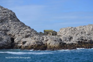 house on island st croix