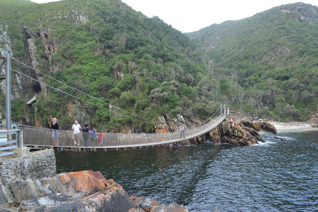 storms river, family friendly, tsitsikamma, segway tour, the big tree, garden route, holiday ideas, 5 tips, suggestions, south africa, western cape