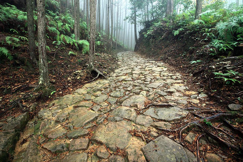 熊野古道 イメージ