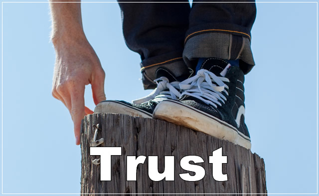 How The Earn The Trust of Your Team