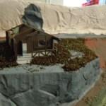 Erstes Grün am Nationalparkhaus in Waldesruh