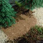 Ausstattung: Busch 6043 Wald & Wiese Bodengestaltung