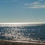 Landschaftsimpressionen vom Weststrand auf dem Darß