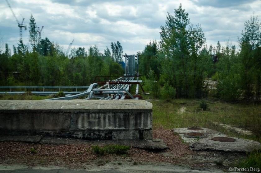 Im westlichen Teil der Tschernobylzone