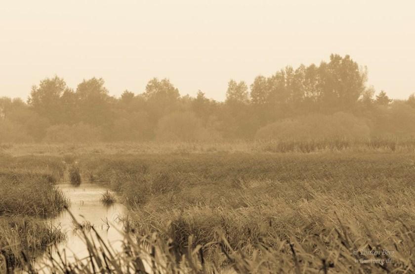 tberg.de im Herbst