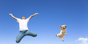 Pets | Dogs | Cats | SPCA