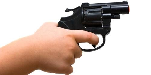 Gun Safety   Pinellas County Sheriff   Project ChildSafe