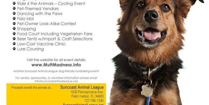 Mutt Madness   Cycling   Suncoast Animal League