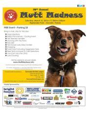 Mutt Madness Comes to Dunedin