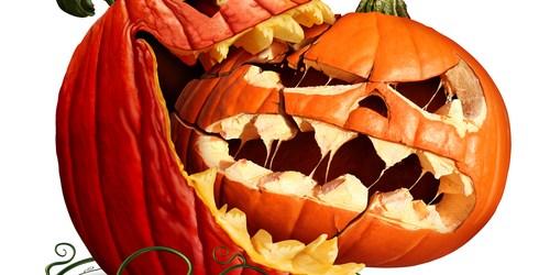 Halloween   Pumpkin   TB Reporter