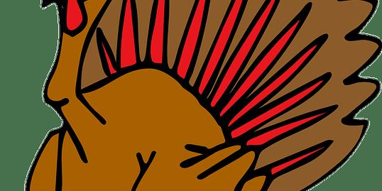 Turkey | Thanksgiving | Hernando County