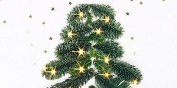 Christmas Tree | Tree Recycling | Environment