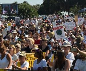 Women's March St. Pete   Protest   TB Reporter