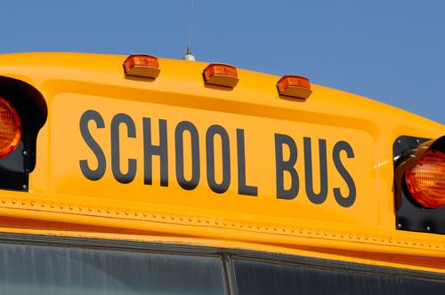 School Bus | Bus | School