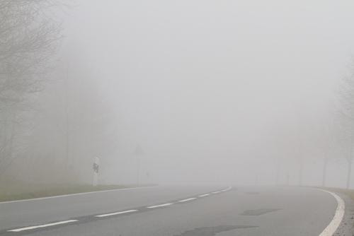 Fog | Foggy Road | Weather