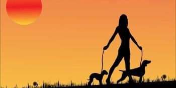 Dog Walk | Dogs | Events Near Me