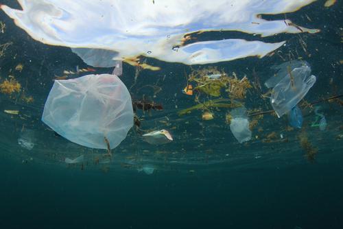 Ocean Plastic Pollution | Environment | Ecology