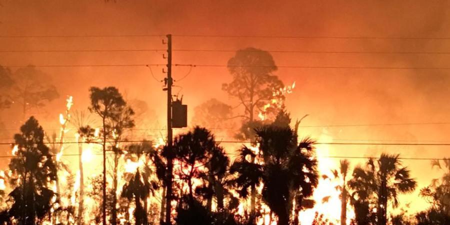 Hernando Fire | Weekiwachee Preserve | Fire