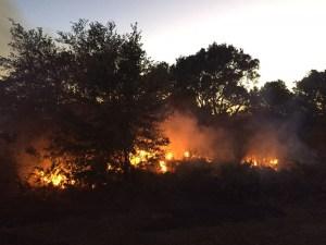 I-275 | Gandy Boulevard | Brush Fire