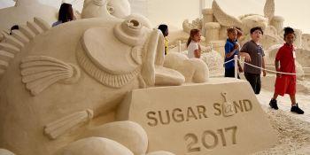 Sugar Sand Festival   Clearwater Beach   Events