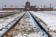 Holocaust Museum to Livestream to Honor Holocaust Victims