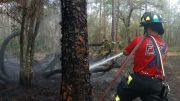 East Lake Fire Rescue Tells How to Prepare for Wildfires