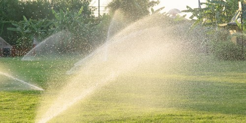 Water | Lawn | Water Shortage