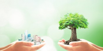 Sustainability | Environment | Sustainable Business