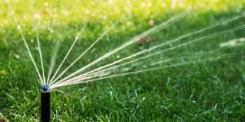 Lawn Watering   Environment   Water Shortage