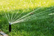 Pinellas Eases Lawn Watering Restrictions