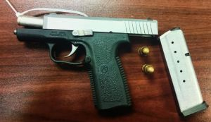 Hand Gun | Pinellas Park Police | Arrests