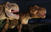 Dinosaurs Are Coming to Tampa