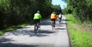 Portion of Pinellas Trail in Dunedin Closes