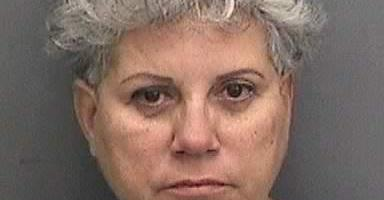 Sylvia Menes Clark | Hillsborough Sheriff | Arrests