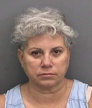 Sylvia Menes Clark   Hillsborough Sheriff   Arrests