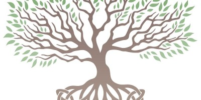 Celtic Tree of Life | Celtic Symbol | Rune