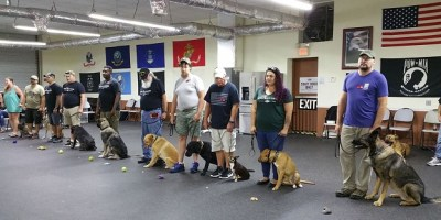 Veterans | Service Dogs | Pasco Animal Services