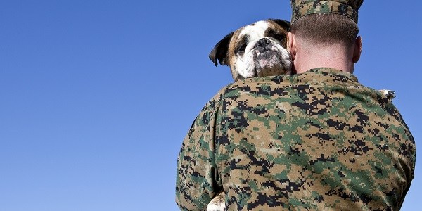 Veterans | Pets | Veterans Day