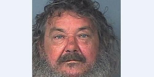 Ronald Demille   Hernando Sheriff   Arrests